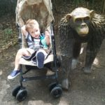 TWO at the Zoo!